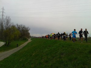 Sava half-marathon